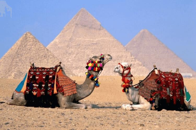 EGIPTO + JORDANIA + ISRAEL